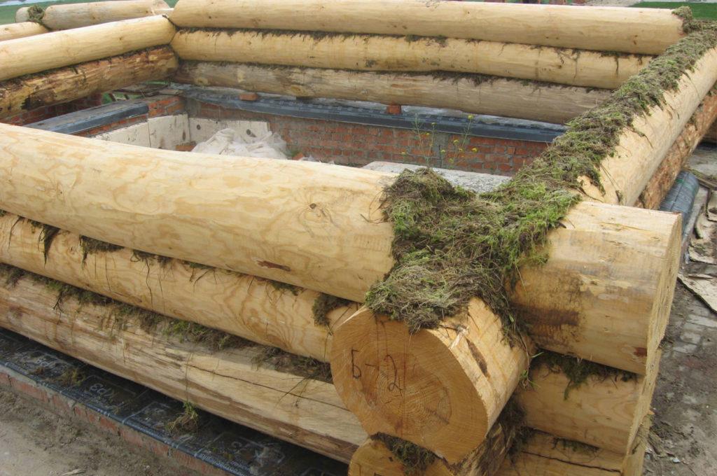 Строительный мох для сруба купить в Костроме